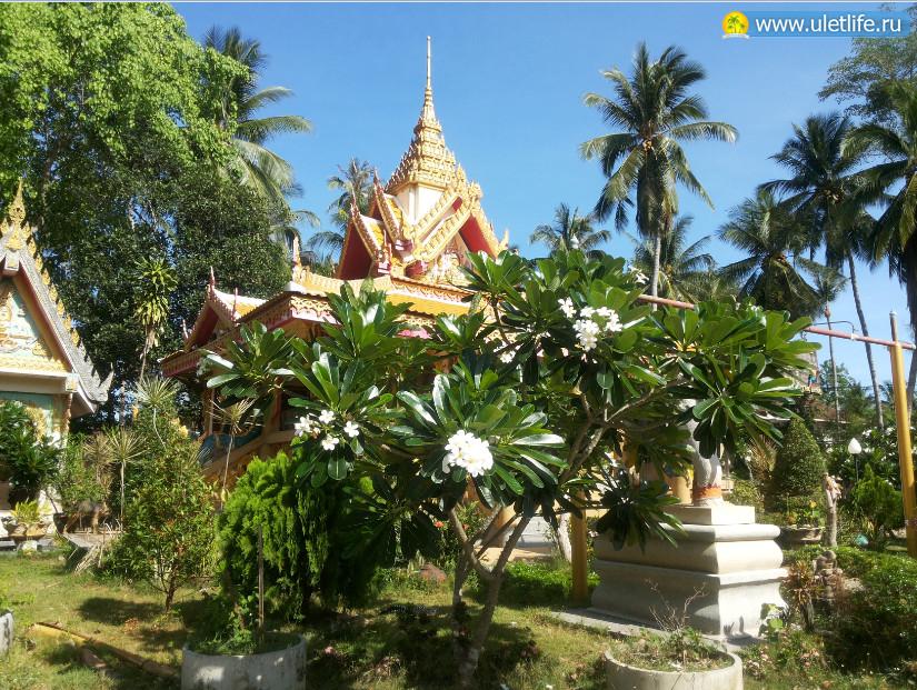 hram-Wat-Kiri-Wongkaram-na-samui-1