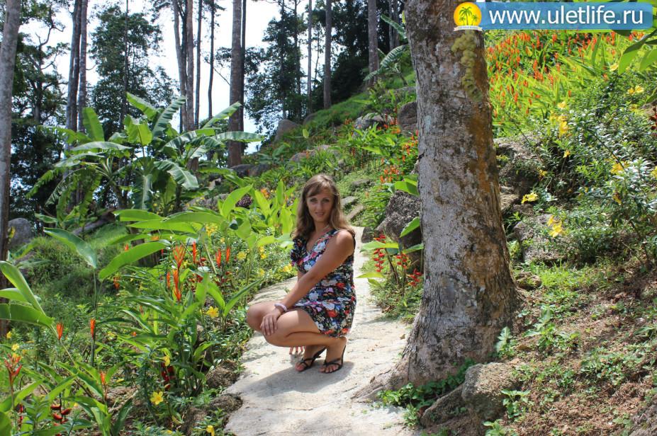 paradise-park-na-samui